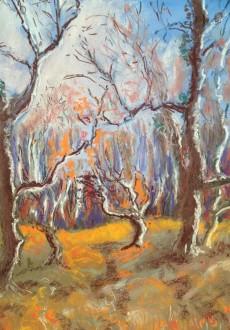 Spooky winter trees (895x1024)