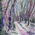 Winter woodlands