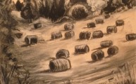 Haybales on the hillside (692x1024)
